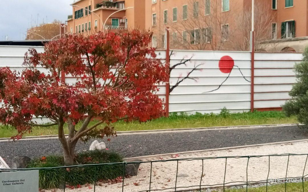 L'autunno tinge l'acero di rosso