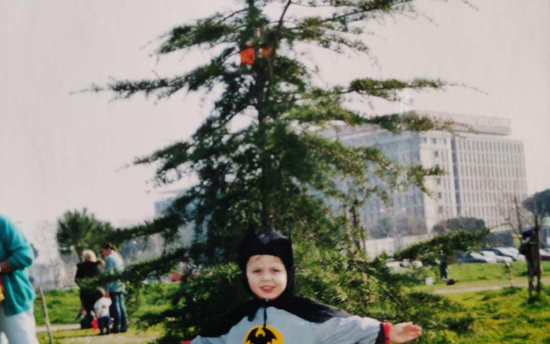 L'albero di Andrea, vent'anni dopo