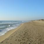 Spiaggia_di_Capocotta