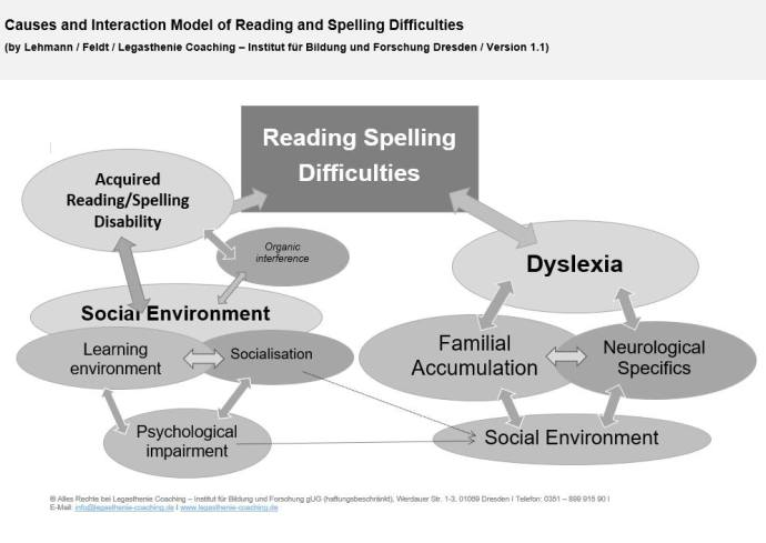 Causes and Interaction Model of Reading and Spelling Difficulties