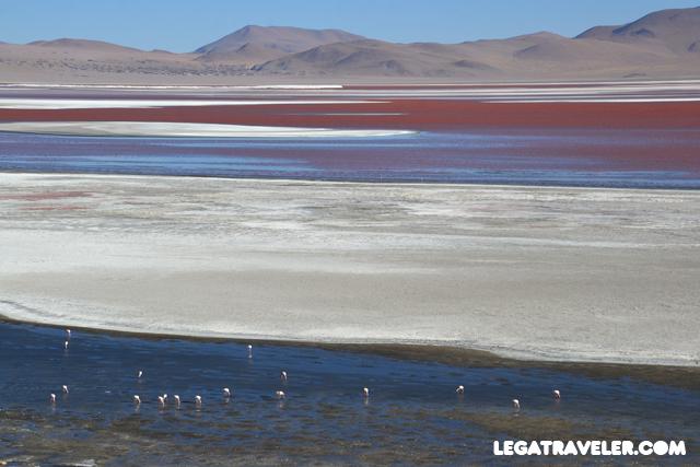 Bolivia_Tour_Salar_de_Uyuni_191