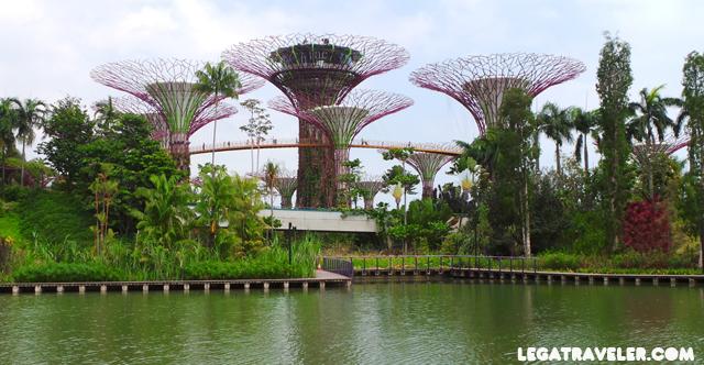 super-trees-gardens-bay-singapur