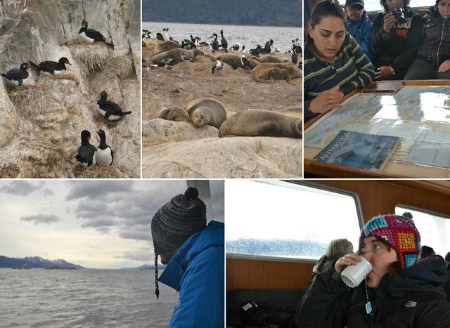 crucero patagonia adventure ushuaia canal beagle