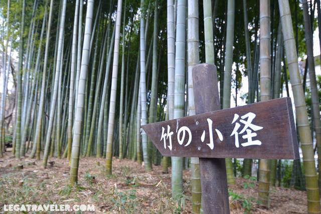 jardin-japones-tonogayato