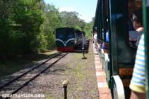 tren iguazu