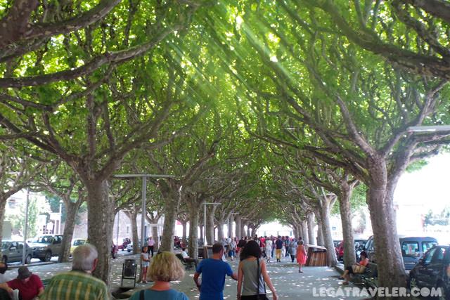 paseo-arbolado-plaza-catalunya-la-seu