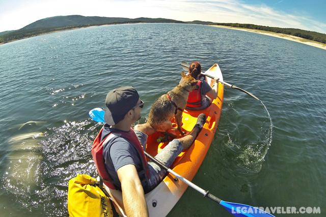 kayak-con-perro-madrid-embalse-atazar