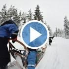 video-viaje-finlandia-laponia-invierno