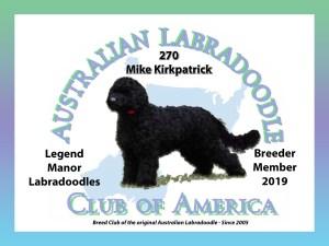 Legend Manor Labradoodles   Breeding Australian Labradoodles