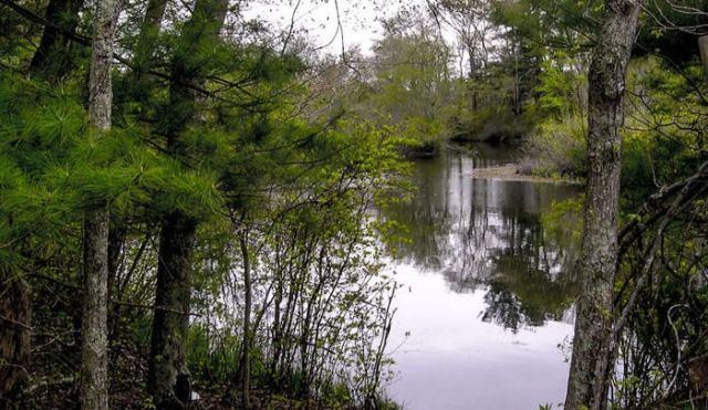 Hasil gambar untuk bridgewater triangle