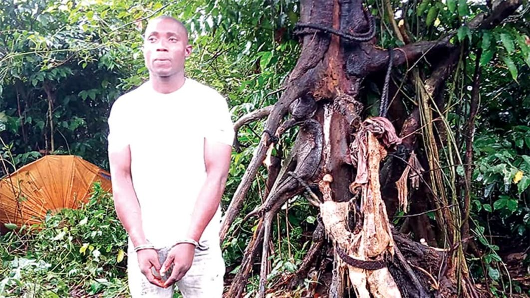 Kidnappers Hang Man On Tree After Collecting One Million Naira