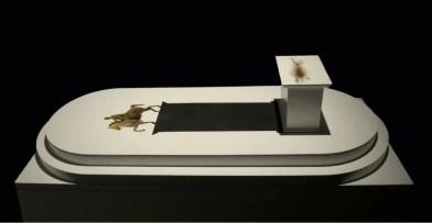 PastedGraphic-2 Arte omozigote di Carlo e Fabio Ingrassia al Macro Arte