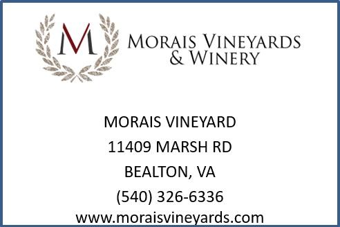 morais-vineyard