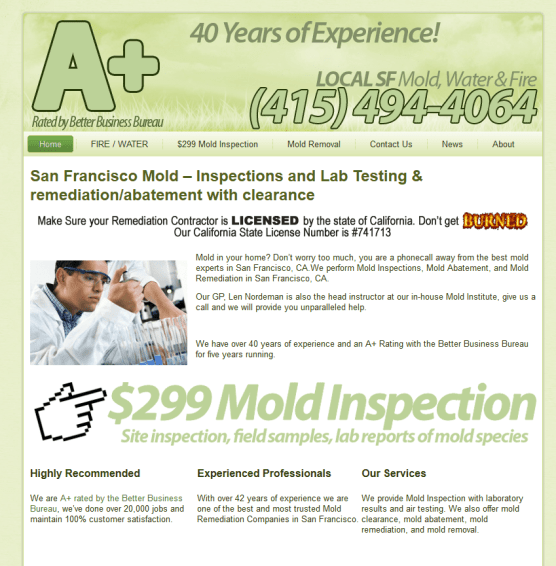 SF Mold Remediation