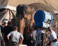 Robert Pattinson en tournage Water for Elephants Photos