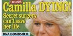 Camilla Parker-Bowles - cancer du foie- odieux comportement du prince Charles