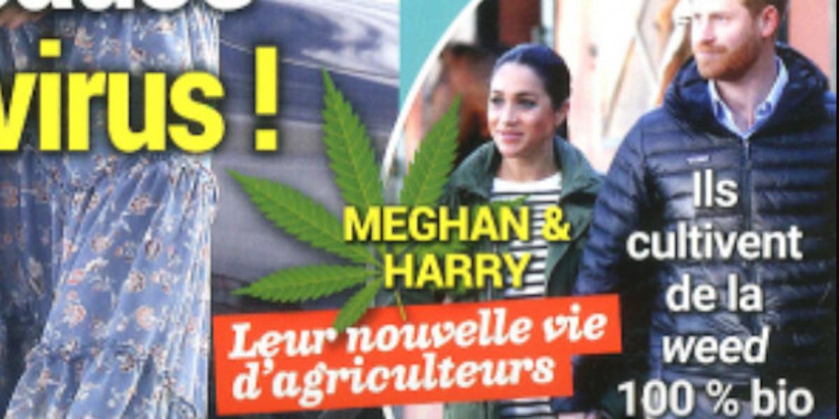 harry-et-meghan-markle-dans-le-business-du-marijuana-ca-agace-au-palais