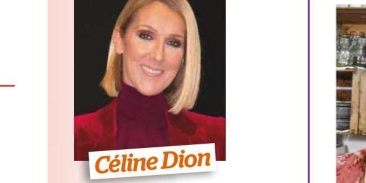 celine-dion-celibataire-lenny-kravitz-en-ligne-de-mire-ca-se-precise