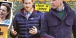 Prince William «clash» avec Harry -  Une montre offerte à Meghan Markle sème le trouble