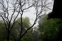 GrandBondMilieu_Hangzhou_Leifeng