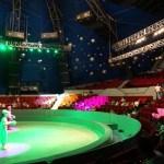 Une matinée au cirque à Shanghai