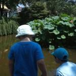Enfants et expatriation : un an après