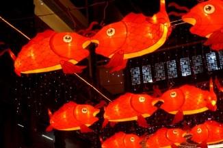 GrandBondMilieu_Fête_lanternes_Shanghai (11)