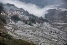 GrandBondMilieu-terrasses_rizieres_Yuanyang_Yunnan (14)