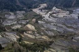 GrandBondMilieu-terrasses_rizieres_Yuanyang_Yunnan (4)