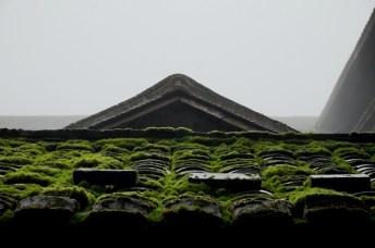Tuiles moussues à Chuxi