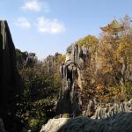 Shilin, la forêt de pierre (Yunnan)