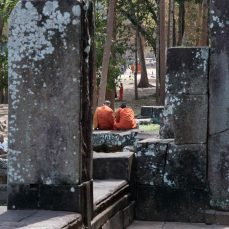 An echo of monks