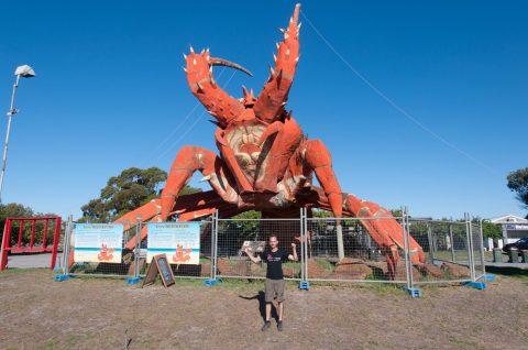 Larry the lobster - Larry la langouste