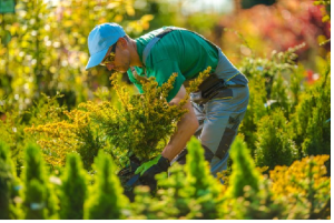 Choose The Best Landscape Contractor With These Five Tips
