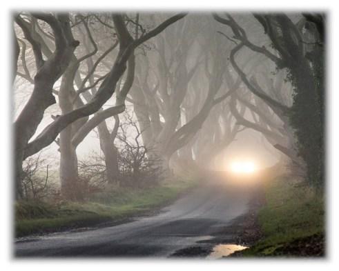dreary-road