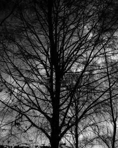 Leica UK - monochrome (4 of 6)