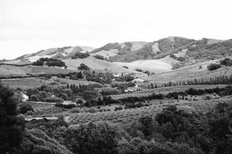 petaluma-mountains