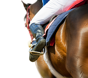 Riding In Comfort On and Off the Horse Trials
