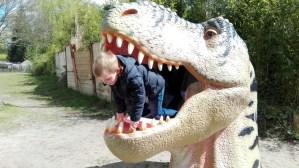 Nieuw leiderschap dinosaurus Loek