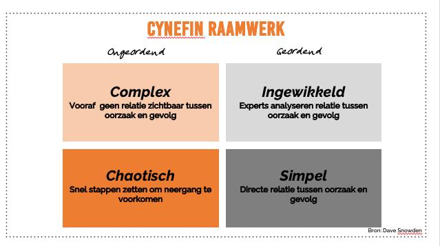 Cynefin raamwerk