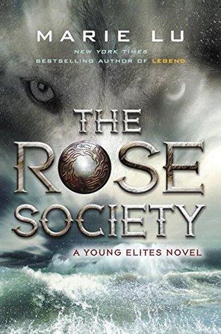 玫瑰的社会