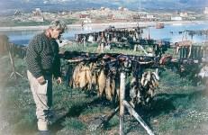 Leif i Grønland