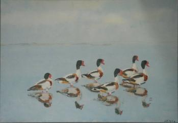 Gravænder, 64x94 cm