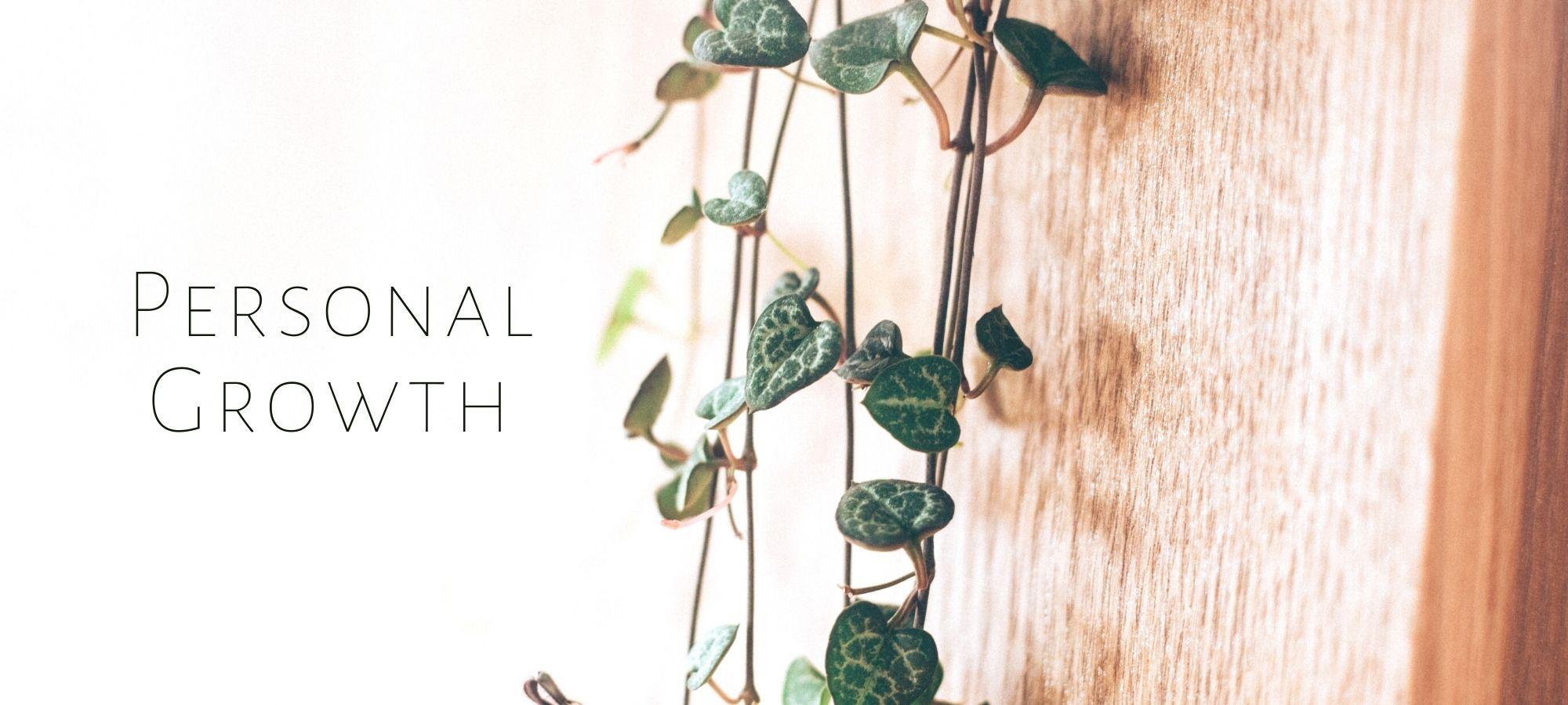 Personal Growth - Leigh Ann Lindsey