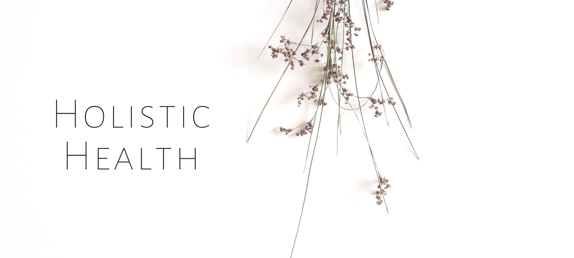 Holistic Health - Leigh Ann Lindsey