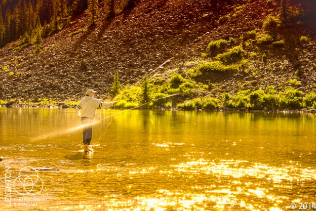Fly Fishing on the White River