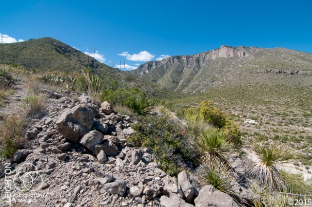 McKittrick Canyon in the Guadalupe Mountains