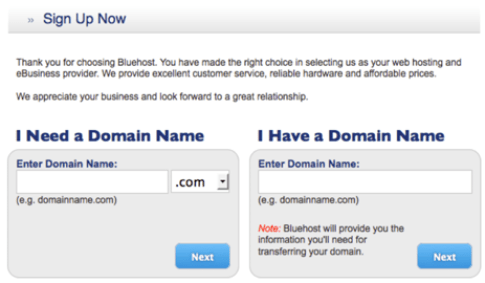 Retire to the Internet with a Website Bluehost domaon name screen