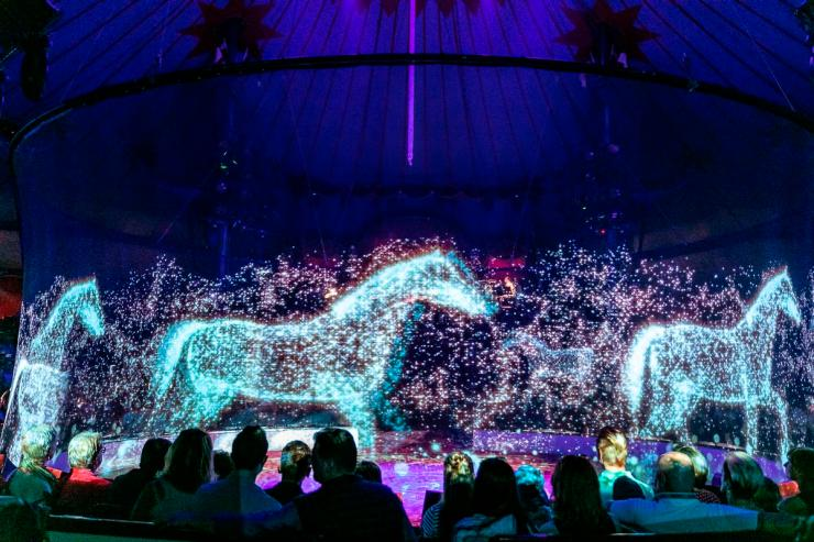 The 'stardust' horses required a million particles to be animated / Circus Roncalli