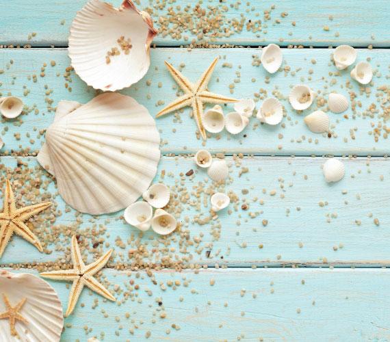 cornici marine crescere crea t tivamente